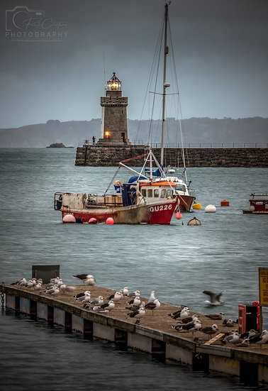 (Photo Framed) Island Life at Harbour, St Peter Port, Boxing Day (PCP9603)