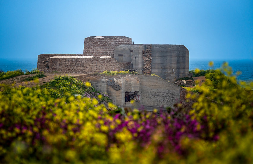 Fort Hommet in Spring Time - Guernsey (PMC0260)