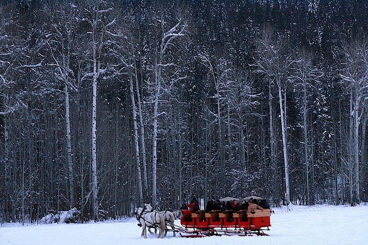 winter29.jpeg