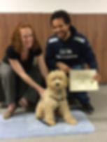 Dogwse Puppy Student