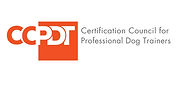 CCPDT-KSA Logo.png