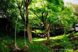 DSC_1441のコピー.jpg