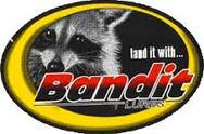 Bandit.jpg
