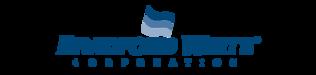 Bradford White Water Heaters by Plumb It Inc. Aurora, IL