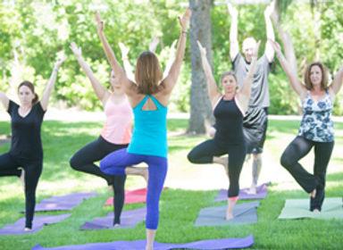Yoga Teacher Training, Batavia, IL