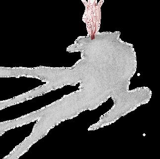 El Cadejo -Shadow