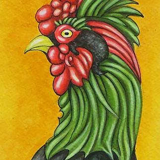 Amphibius Cock