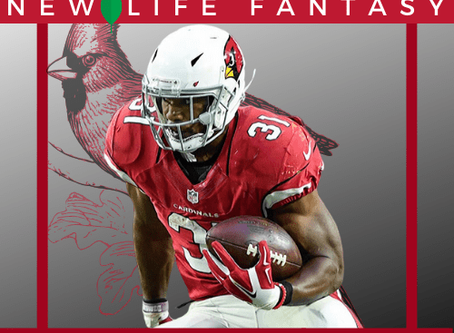 Fantasy Football: Dynasty Outlook on David Johnson