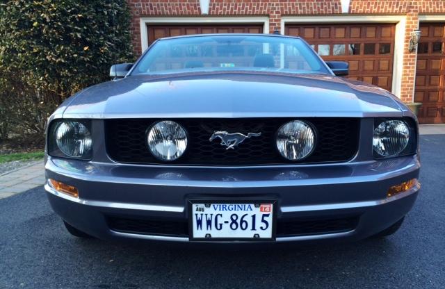 Front Grill - Mustang Emblem
