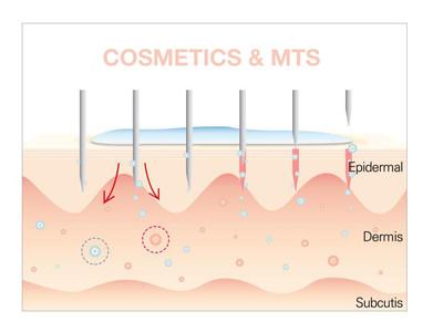 cosmetics and mts.jpg