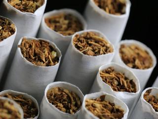 Sarmalık Tütün