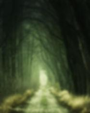 dark-daylight-eerie-1165982.jpg