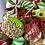 Thumbnail: Jolly Holidays Wreath