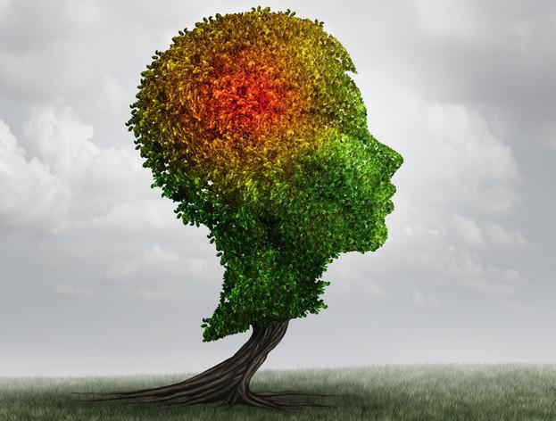 Parenting Mental Health and Trauma