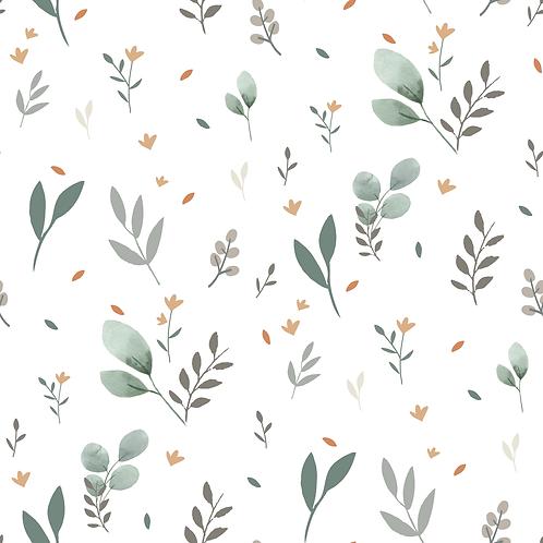 Eukalyptus & Leaves