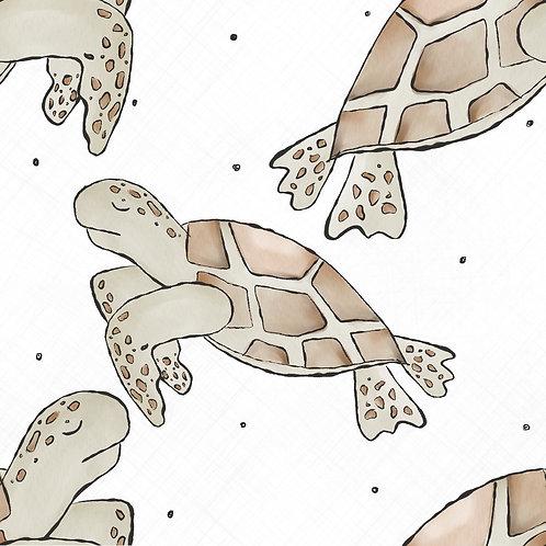 Schildkröten white