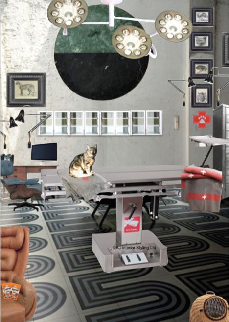 Vetinery Practice Interiors