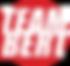 team-bert-logo-modern.png