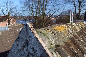 Altes Dach in Hamburg Finkenwerder