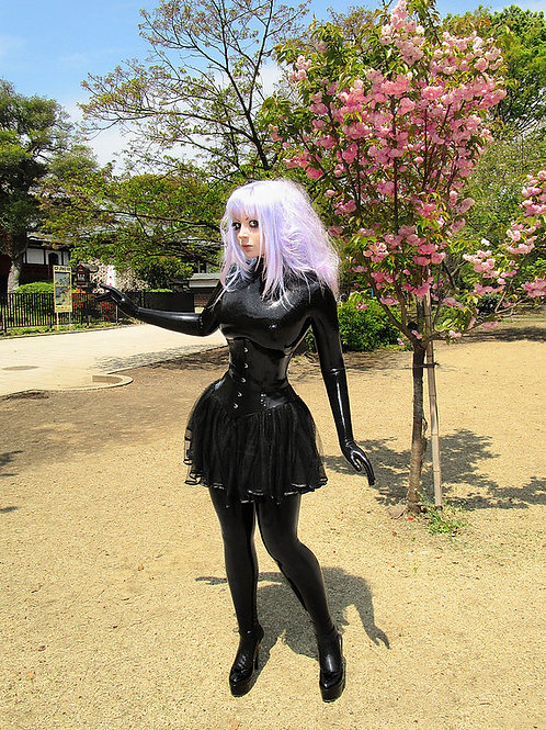 Ueno Park (Tokyo, Japan). High quality glossy photo poster.