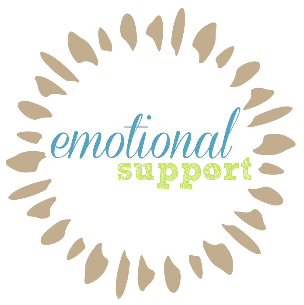 Doula Emotional Support Springfield Ohio