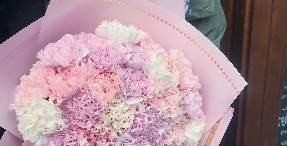 Carnations Cloud
