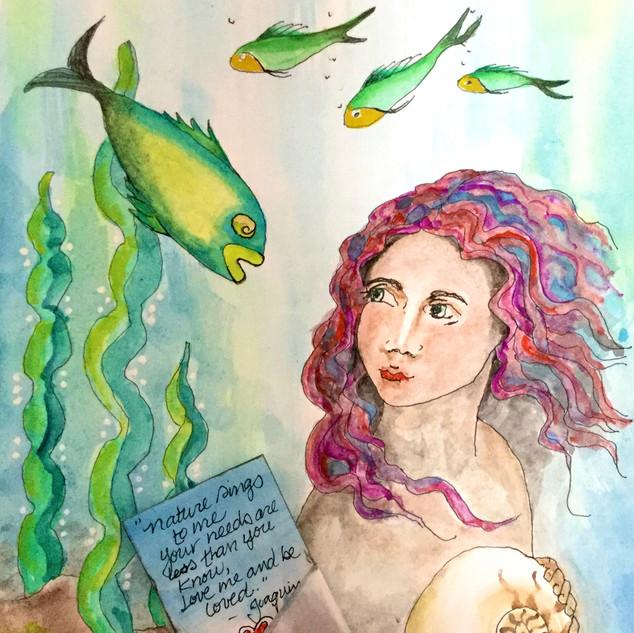 Mermaid's Wonder