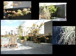 terrasse zinc.jpg