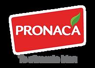 pronaca.png
