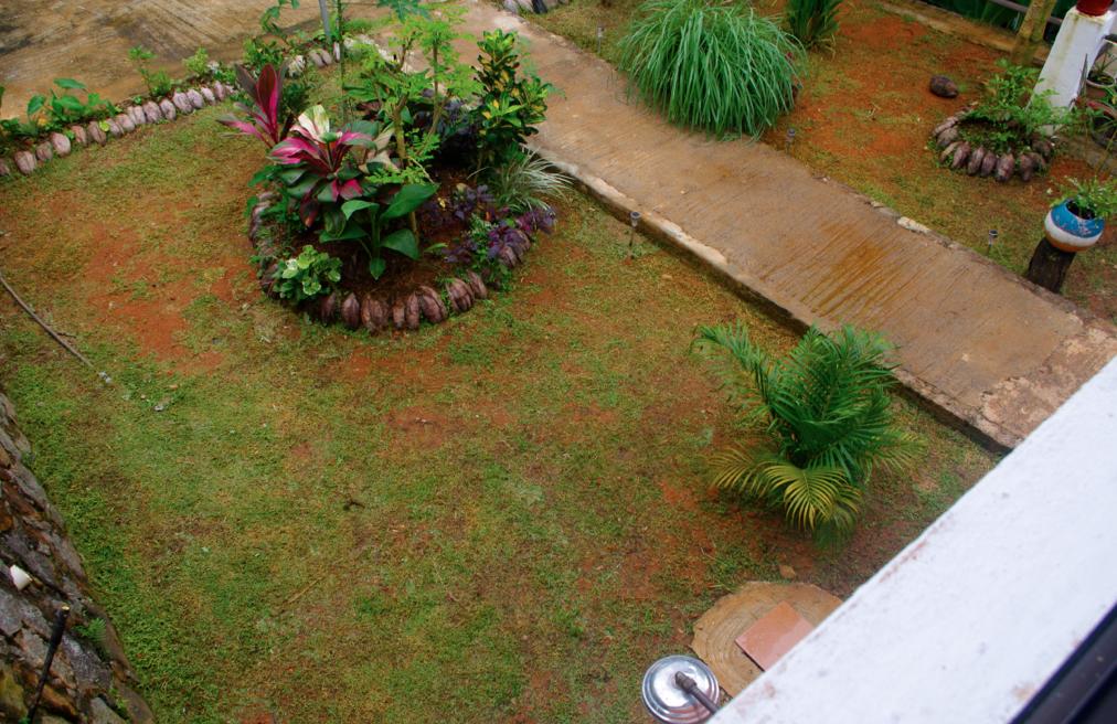papaya seychelles guesthouse garden