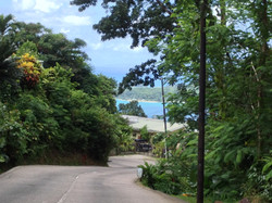 road to papaya seychelles guesthouse