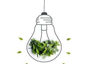 Faire de son entreprise, un modèle écologique !
