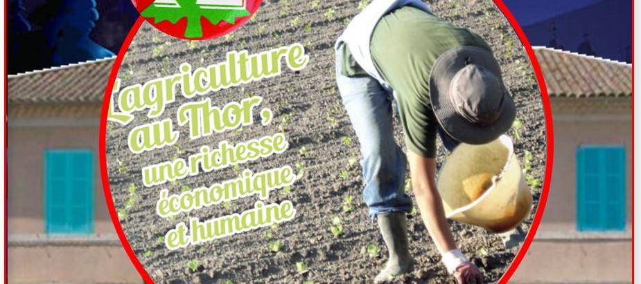 Jour 12 : La préservation du foncier agricole...