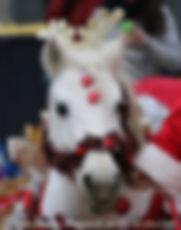 sheva centre équestre poney val de marne