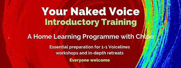 Introductory Training - Updated.jpg