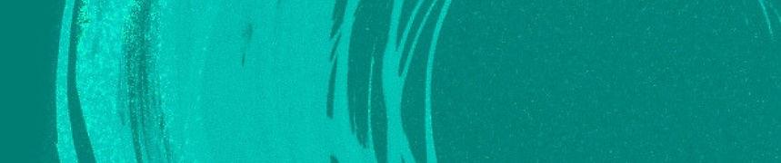 VOCE Banner-3 (Thin).jpg