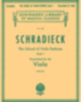 School of Violin technics, transc. .png