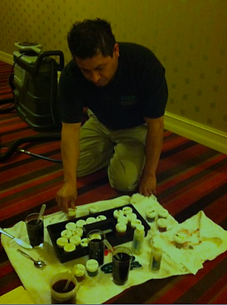 This is a picture of Marty Jolette of Renue Systems dying the carpet back to life at a Wyndham property.