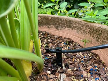 Tropfbewässerung Pflanzkübel
