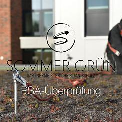 PSA-Pruefung Sommer Gruen.png