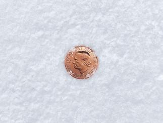 VGS Vinterdäck Mynt