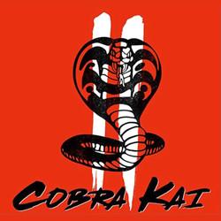Cobra Kai II