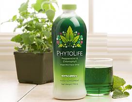 Za razstrupljanje poskrbi Synergy PhytoLife