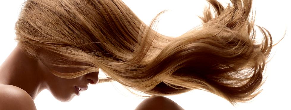 Elizabeth Hairstylist - About