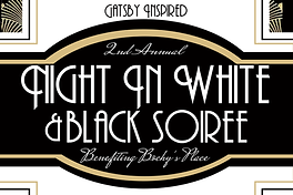 night in white black banner.png