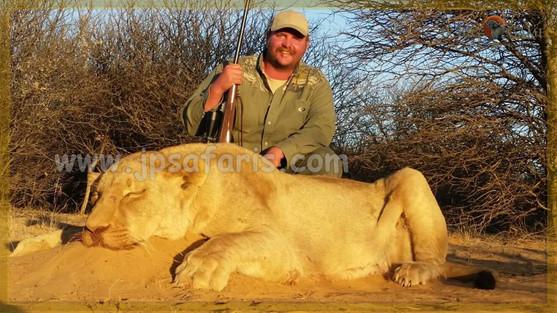 mark lion 1 of 1-606.jpeg