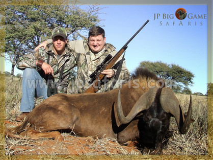 vadim swart wildebeest 1 of 1-4418.jpeg