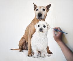 Dog portrait | Oil paint
