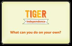 PLAP_tiger-card-back.png