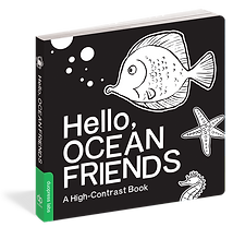 Hello Ocean Friends.png